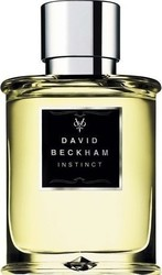 David Beckham Instinct Eau de Toilette 30ml