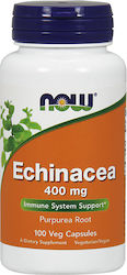 Now Foods Echinacea Root 400mg 100 κάψουλες