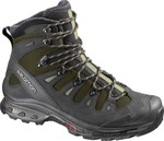 Salomon Quest 4d 2 GTX Iguana 373259