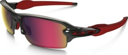 Oakley Flak 2.0 Polarized OO9295-08