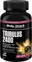 Body Attack Tribulus 2400 Terrestris 150κάψουλες