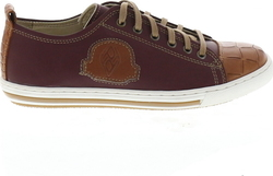 Fratelli Petridi G1046 Bordeaux Brown