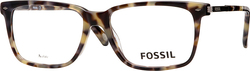 Fossil FOS6071/R5G