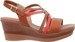 Picadilly 555039 Brown / Red