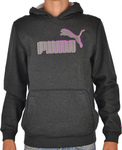 Puma Hooded Sweat 816832-03