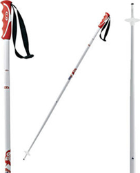 Salomon Teneighty Ski Pole 125 cm 100001-125