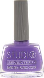 Seventeen Studio Rapid Dry Lasting Color 82