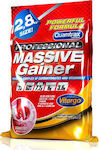 Quamtrax Nutrition Professional Massive Gainer 2800gr Βανίλια