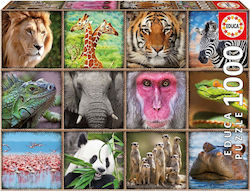 Wild Animals Collage 1000pcs (17656) Educa