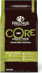 Wellness Core Healthy Weight 10kg