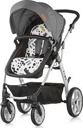 Chipolino Fama Grey