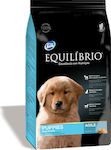 Equilibrio Puppy Large Breed 12kg