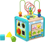 Tooky Toys Wooden Play Cube