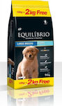 Equilibrio Puppy Large Breed 12kg + 2kg