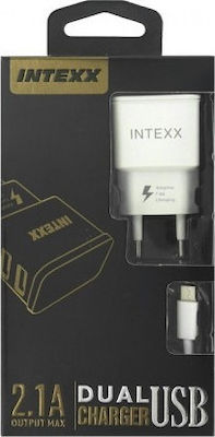 USB-C Cable & 2x USB Wall Adapter Λευκό (Intexx)