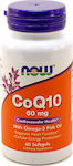 Now Foods CoQ10 60mg With Omega 3 Fish Oil 60 μαλακές κάψουλες