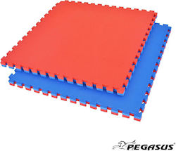 Pegasus Β-4100-20 2cm Blue/Red