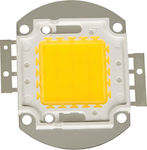 VK Lighting LED Module 12V 50W Ψυχρό Λευκό 6500 K