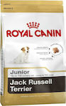 Royal Canin Jack Russell Junior 0.5kg